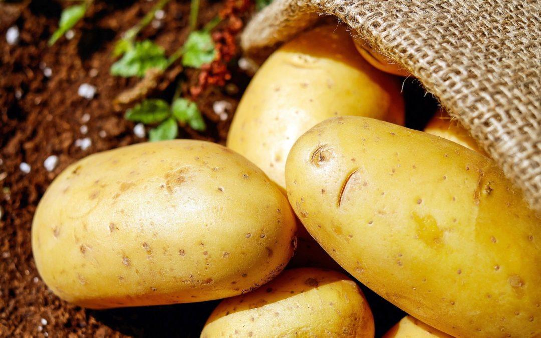 Recette et bienfaits de la pomme de terre